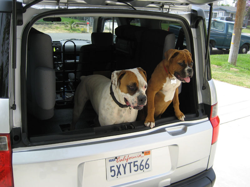 http://www.innxproducts.com/Pets/cargo-liner-cover/Delux-Cargo-liner-cover.html