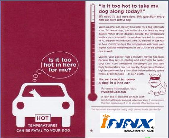 hot car warning